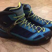 Firetail EVO Mid GTX Hiking Boot