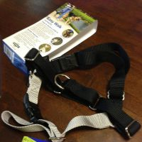 Pet Expertise Easy Walk Harness