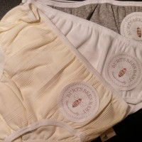 Burt's Bees Baby Toddler Briefs
